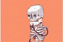 Skull n' Bones ✖ / Skulls and bones.