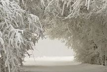 Winter-Cold-White / Tél, tél, tél...