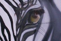 Zebre(s)