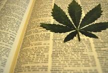 Leaf Art / marijuana leaf and cannabis leaves as art