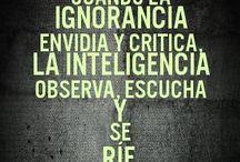 El valor de la inteligencia