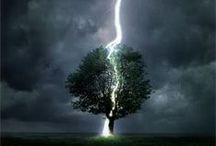 Lightning- Nely