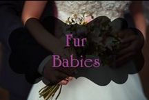 Fur Babies / Our best furry friends. How would we leave them out of the big day? www.bridal101.co.nz