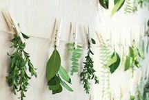 Botanical Style Wedding