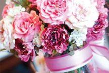 Lovely Flowers (Bájos virágok)