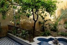 ...giardini, lucciole, lanterne... (Giardini/Gardens)