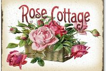 Rose Cottage / I lived in a village in Derbyshire where the house was named ROSE COTTAGE!