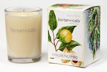 Ginger Nutmeg / The spicy warmth of nutmeg with touches of ground ginger and cinnamon.