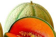 melon time