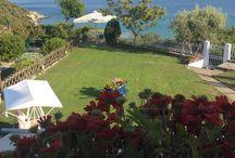 Hotels / Mare Suite Iraklitsa Greece