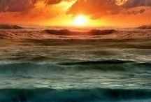 Ocean Nerd / by Meredith McDermott