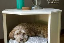 Pets are People too!  / Great ideas and tips to keep your home pet friendly!