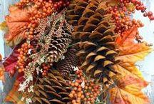 Autumn Wreaths / Beautiful ideas for DIY Autumn wreaths.