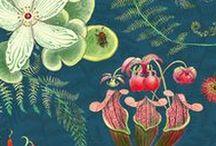 Our fabrics / Newton Paisley textile designs celebrating species
