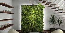 ENTRY / Entry Concepts: Themes:  1.SERENITY: Nature Indoors (Green wall with waterfall, pebble garden, etc.), vs.  2. ELEGANCE: (sparkle and glam, chaise, credenza, etc.)