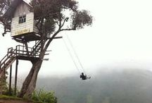 boomhuis. / treehouse masters.
