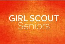 Girl Scout Seniors / Girl Scout Seniors are girls in 9th-10th grade. Under the guidance of a trained adult advisor, girls mix and match activities and resources to suit their needs while giving back to their communities. They connect with each other and build self-esteem and confidence in their skills as they work on a range of projects and gain life experiences.