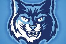 Bobcats kit 2017