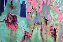 The Beauty of Decay / Beautiful Colour and Texture