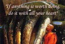 Buddhist Quotes / Quotes from Buddhist teachings