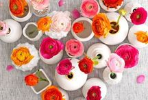 Floral Arrangements / Floral arrangements, flowers, bouquets