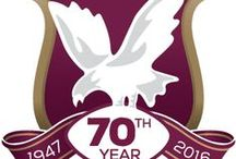Manly Warringah SeaEagles / Manly Warringah SeaEagles NRL
