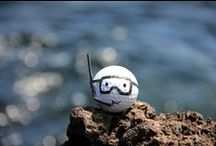 Best of BoB / The best pictures of the funniest golf ball in the world