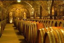 borászat, szőlészet, pincészet