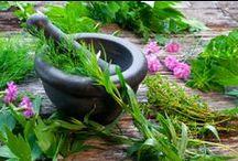 Natural Medicine / natural medicine