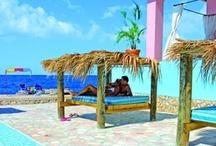 Amo L'Estate  / Offerte / Last-Minute / Crociere La vacanza della tua estate !! www.amolestate.it