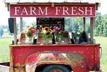 Good O'L Farm'n! :) / by Maggie S.