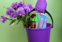 Spring / Get in the spirit of spring with spring cleaning ideas, DIY spring crafts, spring activities, Easter recipes, spring decor and more.
