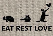 Kitties! / Everything Cats