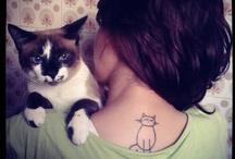 Cats | xo