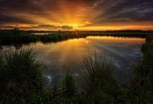 Beauty of the Sun