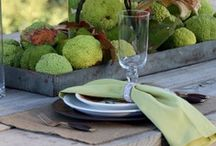 Thanksgiving/Fall  / Inspiration, Decorating & Crafts / by Camilla Fabbri
