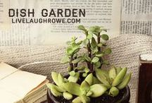Gardening Decor and Tips / Here's a great selection of decorating ideas, gardening tips and more.