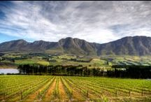 Reasons we love South Africa