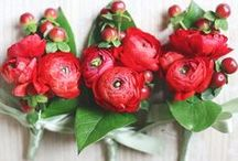 RED WEDDINGS / Red Wedding Palette Inspiration for brides, brides-to-be, and grooms.