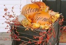 Fall Decorating / Inspiration and DIYs to decorate your home and yard this fall.