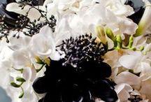 Monochrome Weddings // / Black & White weddings