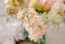 Peach Wedding // / Peach Wedding Inspiration for all you peach loving brides :) XxX