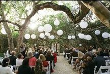 Grootbos Weddings / by Grootbos Private Nature Reserve