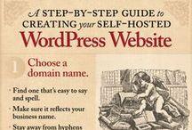 Infographies / réseaux sociaux, business, marketing, blogs : toutes les infographies utiles.