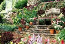 Yard & garden / Beautiful Yard design and gardening tips and tricks