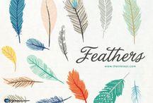 Feathers ʚɞ
