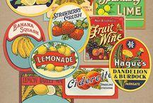 vintage fruit Illustraion