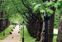 Healthy Living London / Our Every Second Counts city guide to all things fitness, wellbeing, healthy living and eating in London.