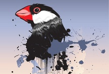 Bird / Java sprrow, Nyasa lovebird.. ETC