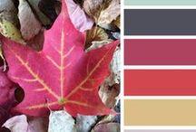 Color Palettes / Inspiring colour combinations